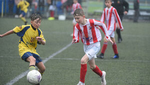 Cork Schoolboys Soccer: Northside club Castleview working tirelessly on return