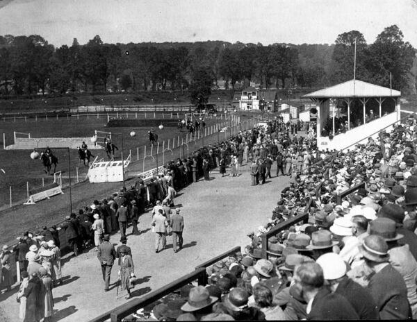 Cork Summer Show from 1929 - provided in connection with new book called Munster Agricultural Society the Story of the Cork Showgrounds by Kieran McCarthy