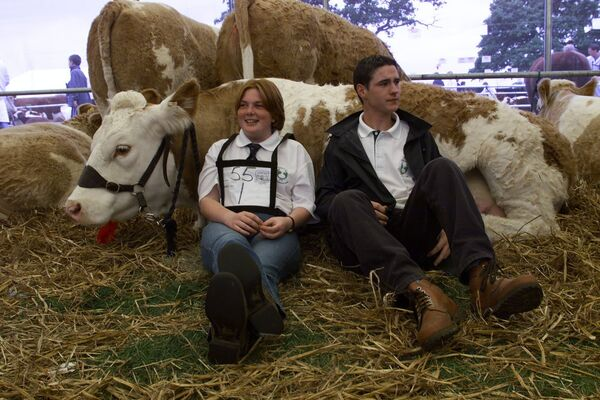 Jenny O'Connell, Mallow, Co. Cork and Brian O'Keeffe, Newmarket, Co. Cork relaxing on 'Grace' the National Junior Champion Simmental Cow at the National Livestock Show at Tullamore, Co. Offaly. - Picture: Kieran Clancy.