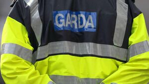 Two arrested after garage broken into in Cork town