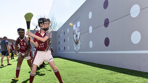 Hurling off the wall is a simple way to escape the Coronavirus boredom