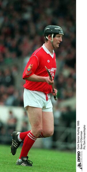Seanie O'Gorman, hurling for Cork in '95. Picture: Tom Honan/INPHO