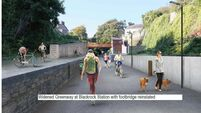 Concern that coronavirus will threaten ambitious plans for Cork greenways
