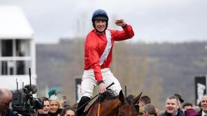 Delight for Youghal's Davy Russell as Envoi Allen delivers at Cheltenham