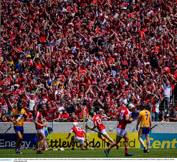 Cork fans celebrate after Luke Meade scores in the Munster final. Picture: David Fitzgerald/Sportsfile