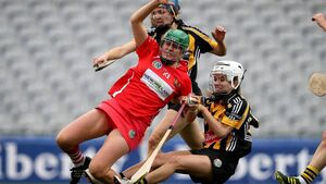 Linda Mellerick: Why can't camogie and ladies football work together?