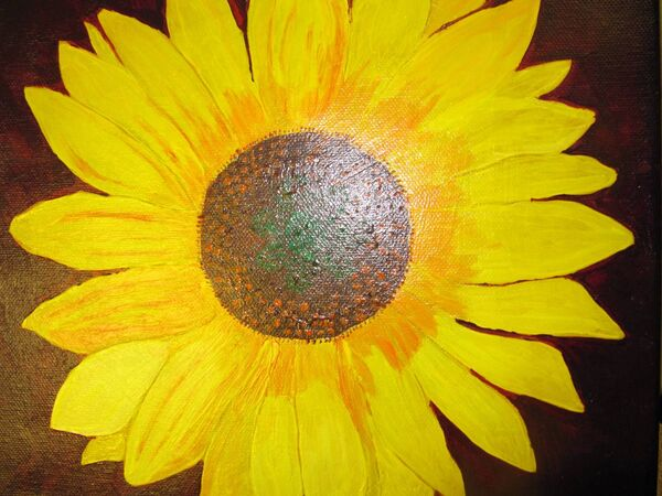 Sunflower. By Alison Peppard.