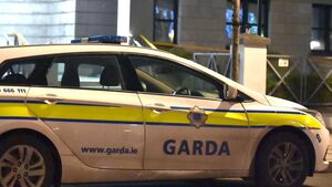 'Arrest me, arrest me' shouted Cork woman at Gardaí