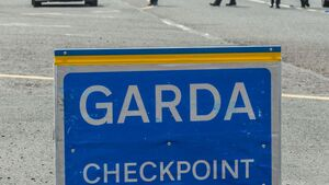 Bail refused as Cork gardaí fear man who rammed checkpoint is a flight risk