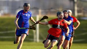 Cork hurling boss Kingston hopes Fitzgibbon Cup form carries to Rebel red