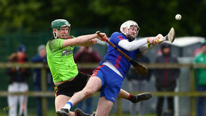 Modern hurlers are versatile enough to play many roles for club and county