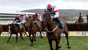 A day to remember for Cork jockeys with a Rebel treble at Cheltenham