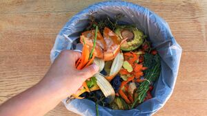 Kate Ryan: Would you eat a meal made up of food waste... but why?
