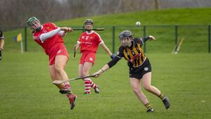 A dispute kept the Cork camogie team out of the All-Ireland for eight seasons