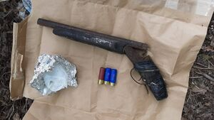 Shotgun and ammunition seized by Gardaí in Cork city