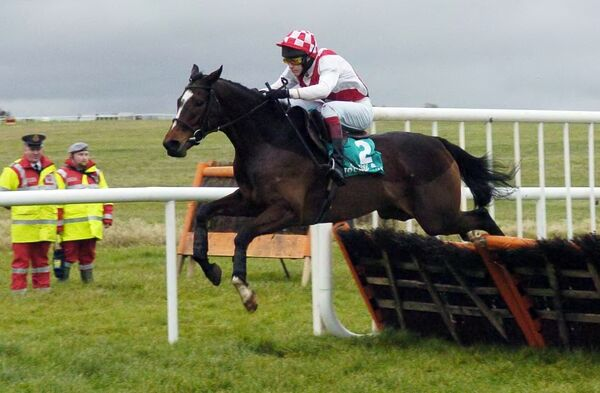 Pom Flyer with jockey Kevin Coleman clearing the last to win the Horse & Jockey Hotel Hurdle at Thurles. Picture: Denis Minihane.