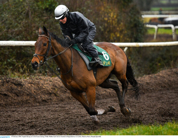Virginia Bascop on Un De Sceaux during a Willie Mullins Yard visit recently. Picture: Harry Murphy/Sportsfile