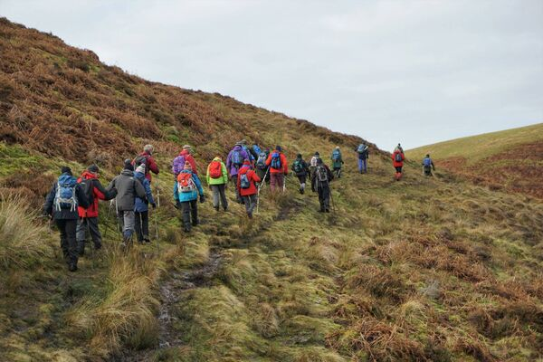 WINTER WALKERS: Join a local walking group and explore new places in a social setting.