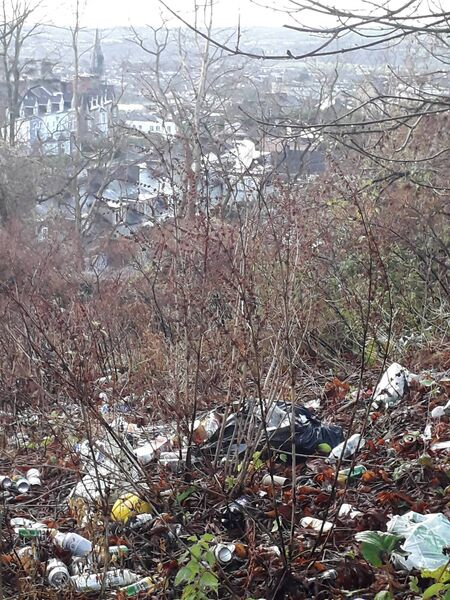 More fly-tipping has been spotted in the northside