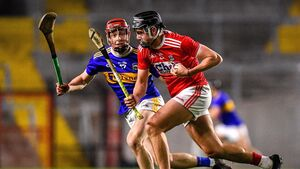 The John Horgan column: Munster hurling will be more cutthroat that ever