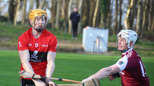 Fitzgibbon Cup holders UCC have more to come with quarter-final spot secured