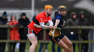 Fitzgibbon Cup final preview: UCC must be wary against DJ Carey's IT Carlow