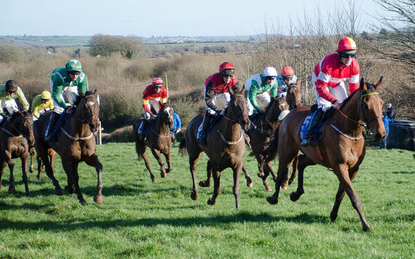 Sunset West leads the field in the Tattersalls 5-Y-O Geldings Maiden second race at the Killeagh Point to Point. Picture: Howard Crowdy