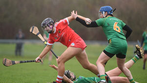 Weather and Meath get the better of Cork camogie side after dour struggle