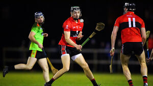 Cork hurler Mark Coleman on why second Fitzgibbon success was so sweet