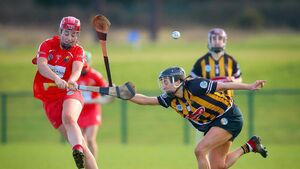 Sigerson and Cronin strike for UCC camogie team to reach Ashbourne final