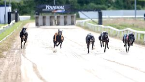 Minister responds to anger over proposed closure of Youghal greyhound track