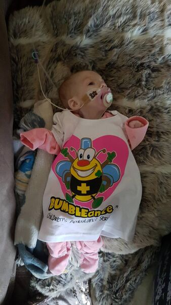 Willow died in November, at just eight months old. She was diagnosed with Smith-Lemi-Opitz, a very rare and life-limiting condition.