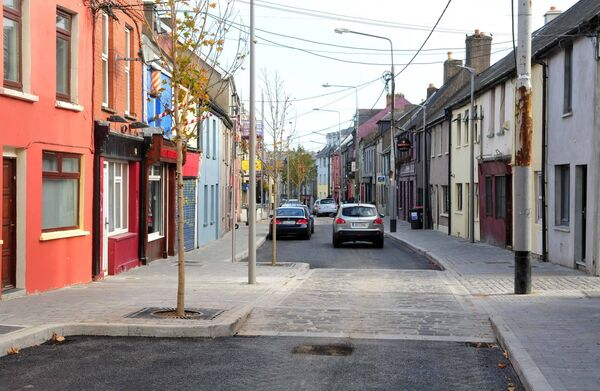 Newly planted trees on Barrack Street. Picture: Denis Minihane.