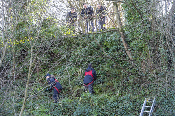 Garda members involved in a massive search of the undergrowth on the cliff face above O'Donovan Rossa, Road, Cork in connection with the death of CIT student Cameron Blair who was stabbed at the Bandon Road, Cork.