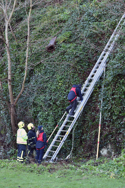 Members of the Cork Fire Service and the Gardai takig part in a massive search of the undergrowth on the cliff face above O'Donovan Rossa, Road, Cork in connection with the death of CIT student Cameron Blair who was stabbed at the Bandon Road, Cork. Picture Dan Linehan