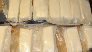 More than €270k of cocaine was hidden under a pile of manure in Cork