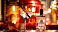 Bringing gin and jobs to Cork city - Rising Sons Brewery produce new gin