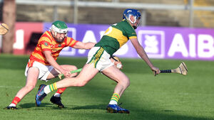 Refreshed Newtownshandrum are hurling up a storm since Bishopstown loss