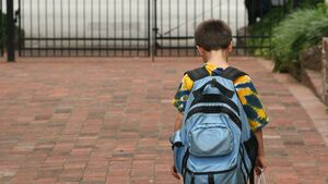 Pupils have to be driven to school in Ireland because of the weight of their bags