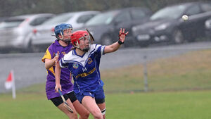 Camogie champs Inniscarra find a way past determined St Catherine's