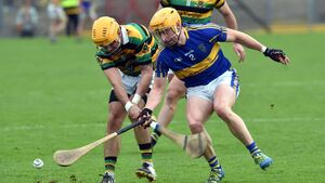 Glen hurlers need to make experience count in final joust with Imokilly