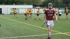 West Cork native Eoin Deasy does his bit for Westmeath hurling in the Big Apple