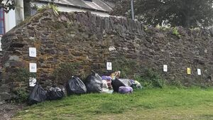 More illegal dumping at Cork's most scenic location