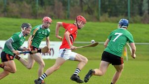 Rochestown College suffer second loss in Harty Cup to slick Ardscoil Rís