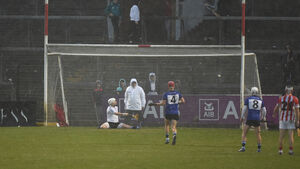 Driving rain and a determined Sars still couldn't halt Imokilly hurlers' march