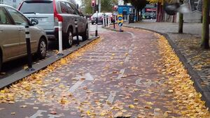 Leaves on cycle lanes a danger to children and adults, says campaign