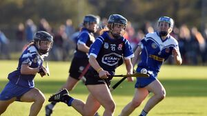 The Linda Mellerick column: Sars had perfect blend of youth and experience in camogie breakthrough