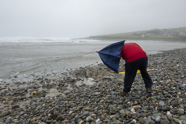 A man fighting against the wind on the beach at Garrettstown. Picture Dan Linehan