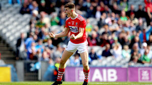 Talented group of Cork footballers and focused management team deserve huge credit for going the extra mile at Croker