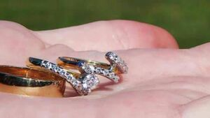 Plea for return of stolen wedding and engagement rings
